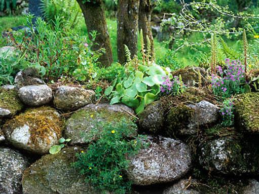 Celtic sanctuary and kew mary reynolds reformed for Celtic garden designs