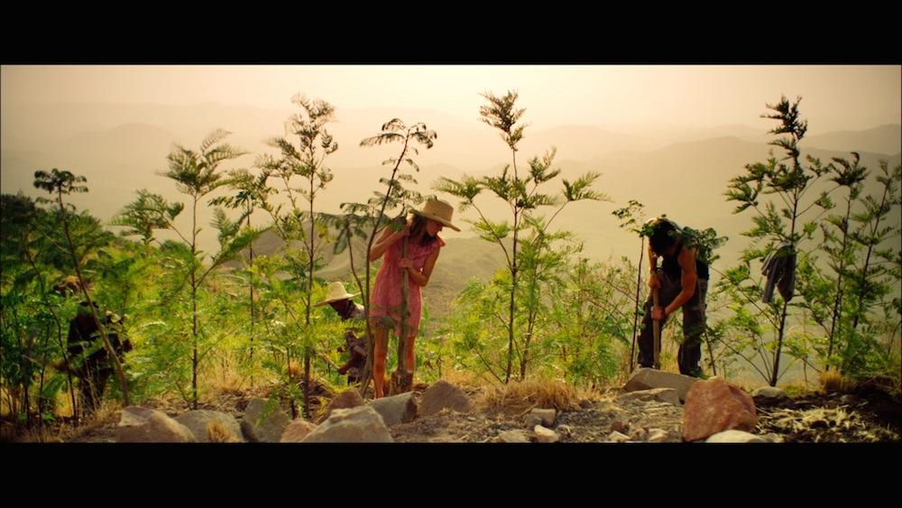 FILM - DARE TO BE WILD - 6