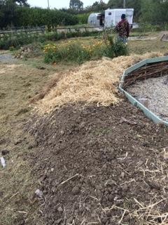 17_soil_straw